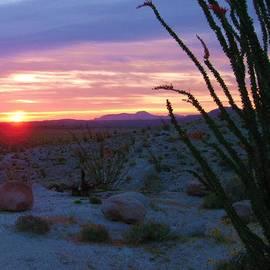 David Broome - Desert Sunrise