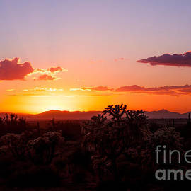 AJ Goldian - Desert Sunset