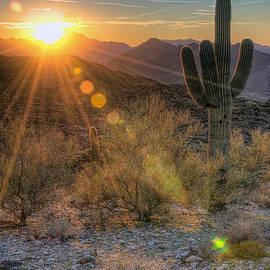 Eddie Yerkish - Desert Sunset
