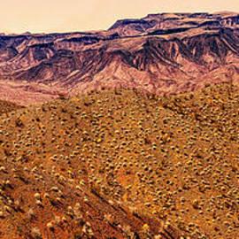 Bob and Nadine Johnston - Desert View in Arizona by the Colorado River