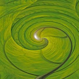 Joe  Connors - DESIGN SPIN 45 Banana Leaf