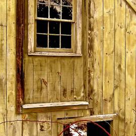 Elizabeth Tillar - Detail of Old Barn