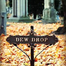 Brenda Conrad - Dew Drop