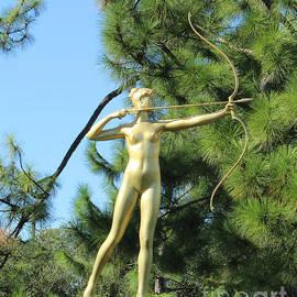 Steven Parker - Diana Statue
