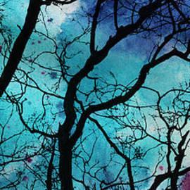 Olga Hamilton - Diptych Nests Part Two