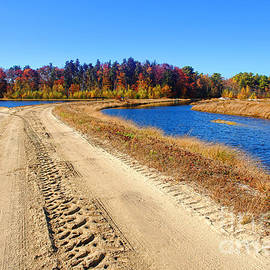 Olivier Le Queinec - Dirt Road in Marsh