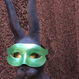 Lyric Lucas - Disguised Rabbit