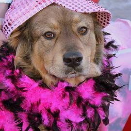 Fiona Kennard - Do You Like My Pink Hat