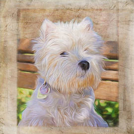 Jordan Blackstone - Dog Art - Just One Look