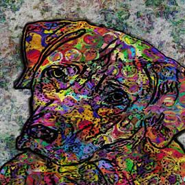 Jack Zulli - Dog With Color