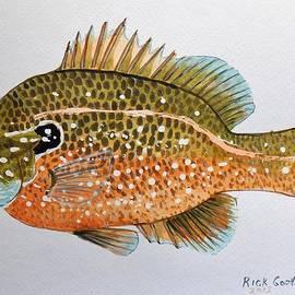 Richard Goohs - Dollar Sunfish