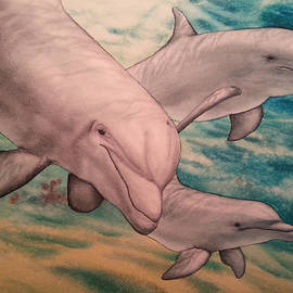 TK Alexander - Dolphin Play Date