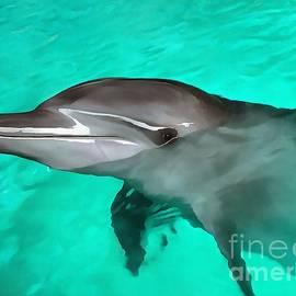 Sergey Lukashin - Dolphin