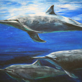 Catherine Link - Dolphins