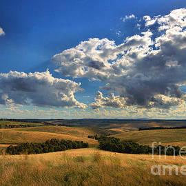 Joy Watson - Donny Brook Hills