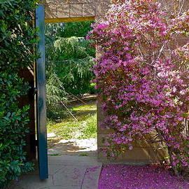 Denise Mazzocco - Doorway To Paradise