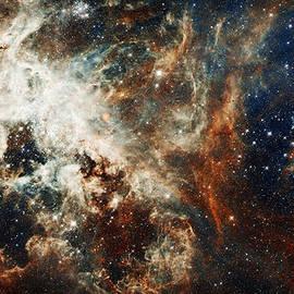 Celestial Images - Doradus Nebula