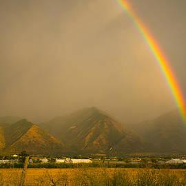 Southwindow Eugenia Rey-Guerra  - Double rainbow harvest