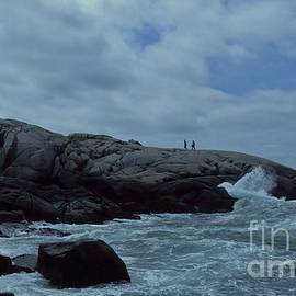 Dave Lahn - Dove In The Wave At Peggys Cove