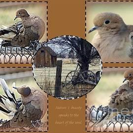 Bobbee Rickard - Dove Play