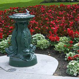 Sally Weigand - Dragon Garden Fountain