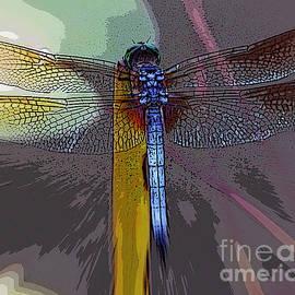 Elizabeth McTaggart - Dragonfly
