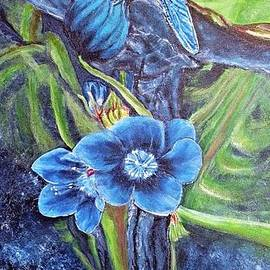 Kimberlee  Baxter - Dragonfly Hunt for Food in the Flowerhead