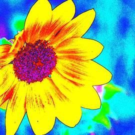 Karen  Majkrzak - Drama in a Vibrant Sunflower