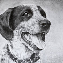 Karen Broemmelsick - Drawing of a Puppy