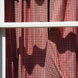 Ira Shander - Drawn Curtains