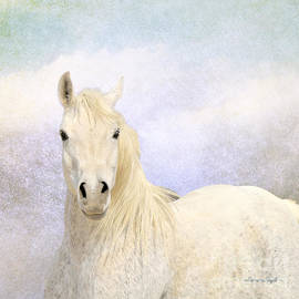 Karen Slagle - Dream Horse