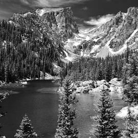 David Broome - Dream Lake Forest Vista