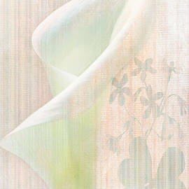 Camille Lopez - Dreaming Calla Lily