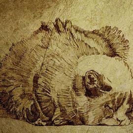 Daniel Yakubovich - Dreaming Cat