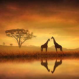 Jennifer Woodward - Dreaming of Africa