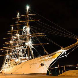 Georgia Mizuleva - Dreaming of Mediterranean Cruises - the Glamor the Lights the Parties
