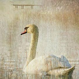 Georgiana Romanovna - Songs Of A Swan