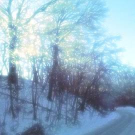 Jennifer McGuire - Dreamy winter driving