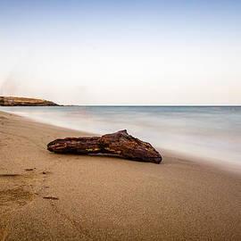 Alfio Finocchiaro - Driftwood on a beautiful beach