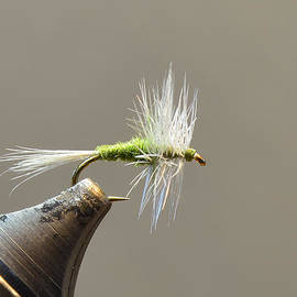 Phil Rispin - Dry Fly 002