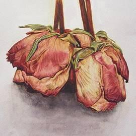 Valentina Henao - Dry Roses