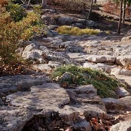 John Straton - Dry Spring in Winter
