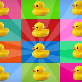 Mark Ashkenazi - Ducks