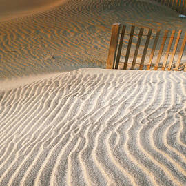 Steven Ainsworth - Dune Patterns III