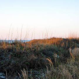 Kay Lovingood - Dunes