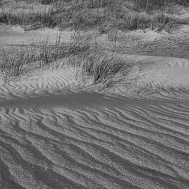Suzanne Gaff - Dunescape in Black and White