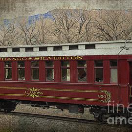 Janice Rae Pariza - Durango and Silverton Alamosa Train Car