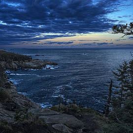 Marty Saccone - Dusk Vista at Quoddy Head State Park