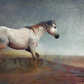 R christopher Vest - Dust Storm- White Horse