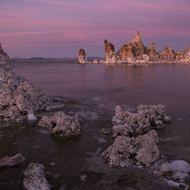 Denise Dube - Dusted Pink Breeze Over Mono lake